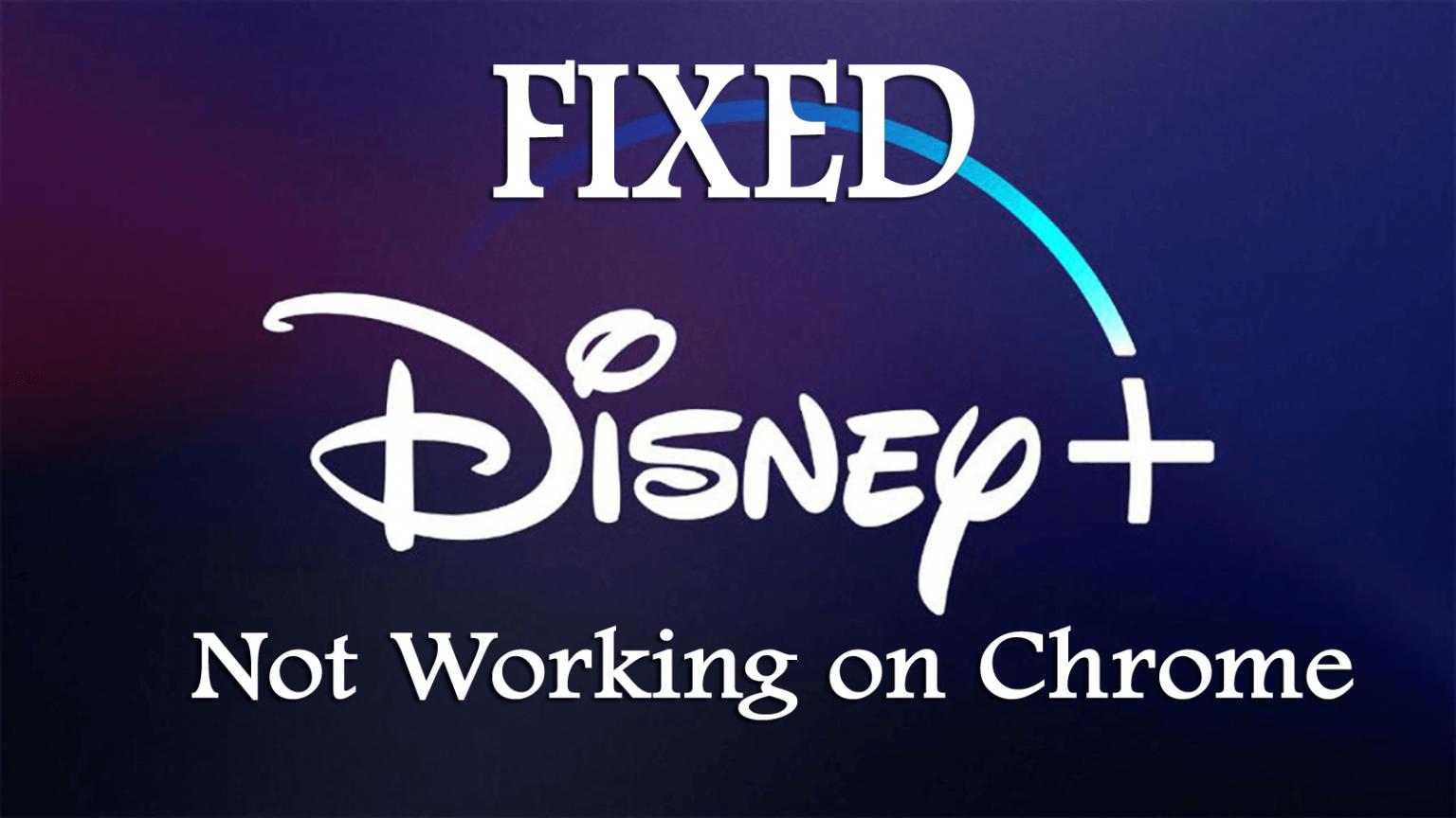 Disney Plus Benutzer